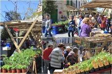 Ökologische Lebensmittel auf Mallorca