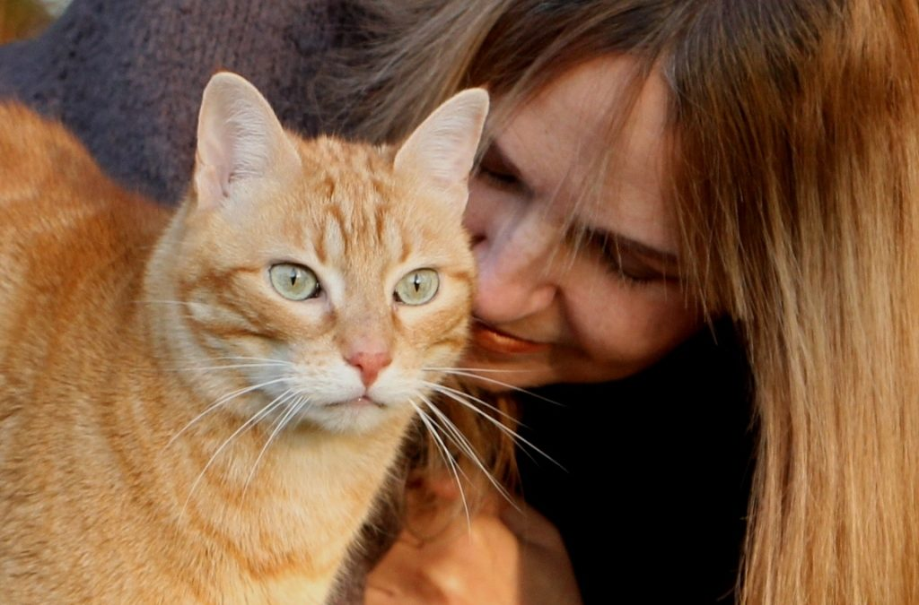 Catitude - Katzenpsychologin Sylvie Sterling