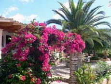 Reiki Seminar zum 3. Grad, 16.12. @ Lichtgarten Mallorca | Son Carrió | Illes Balears | Spanien