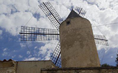 Tagestour durch Montuiri