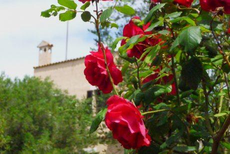 21.11. Autoren-Treffen Son Baulo @ Kulturfinca Son Bauló | Lloret de Vistalegre | Illes Balears | Spanien